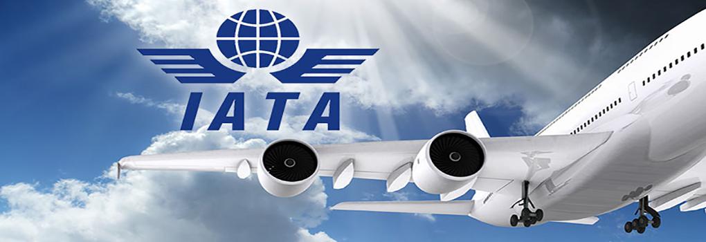IATA-training-Programs-profileimgFile56ab5c7402b73